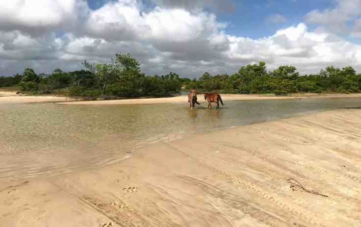 A river in the road of downtown Atins Lençóis Maranhenses National Park the Most beautiful place in the world