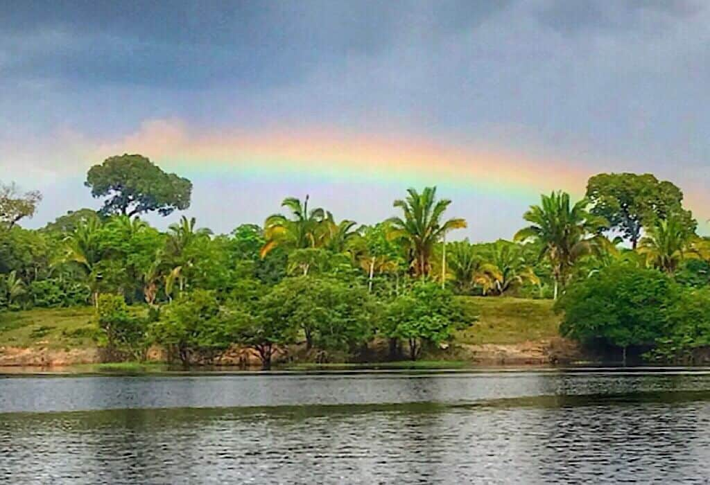 Rainbow in the Amazon Jungle