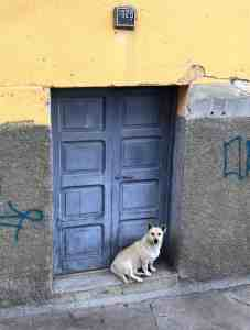 Blue Door in Bolivia representing being Ready to seize opportunity