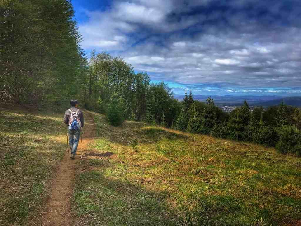 Trail near the ski lodge above Bariloche Argentina
