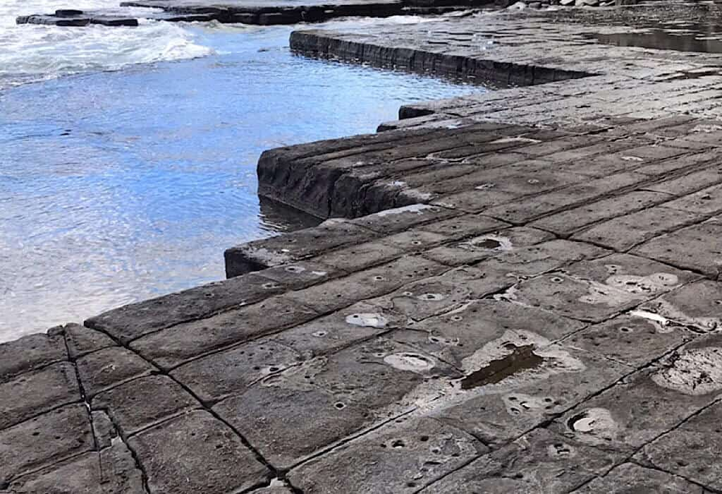 The straight edges of the Tessellated Pavement along the beach