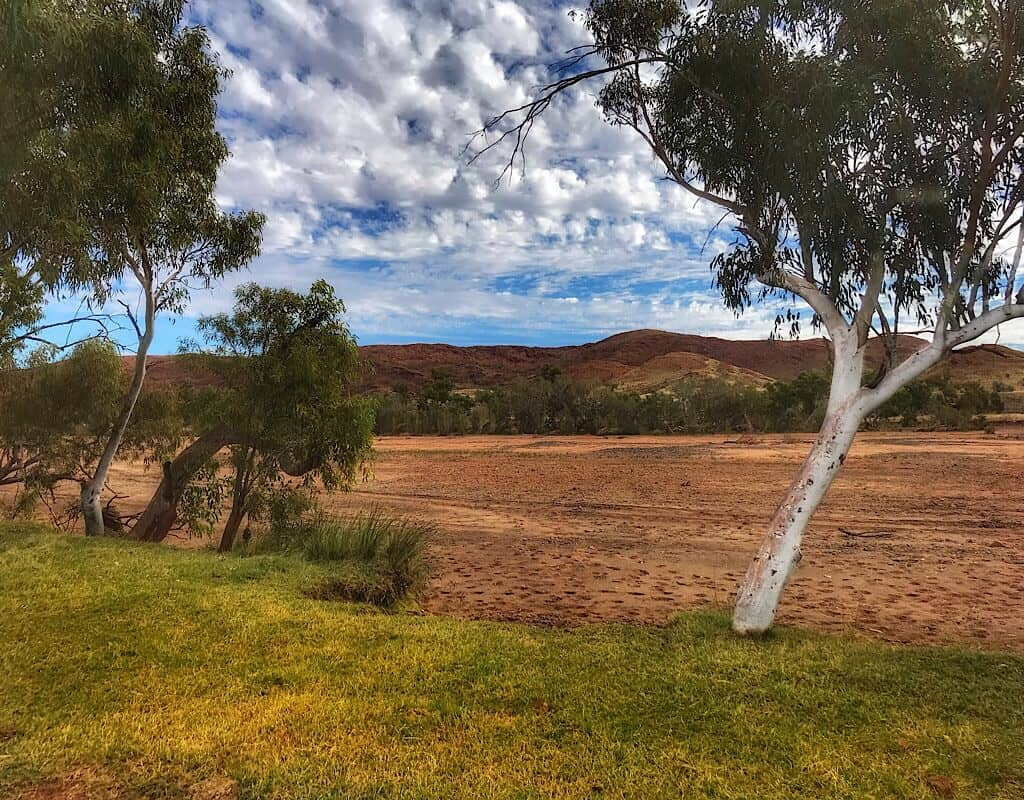 Dry river bed at the end of Garden road, green grass, white tree trunks, and red rock in the distance.