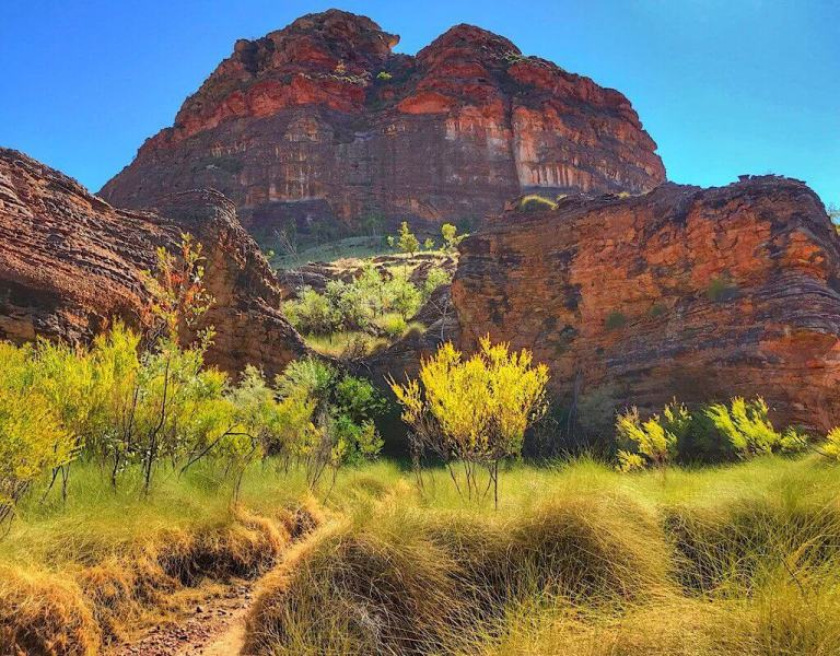 Keep River Trail with beautifully layered geological structures and spinefex grass in the foreground.