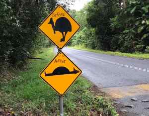Road signs for cassowaries and speed bumps modified by a tourist