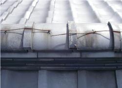 屋根に上って全体を目視する