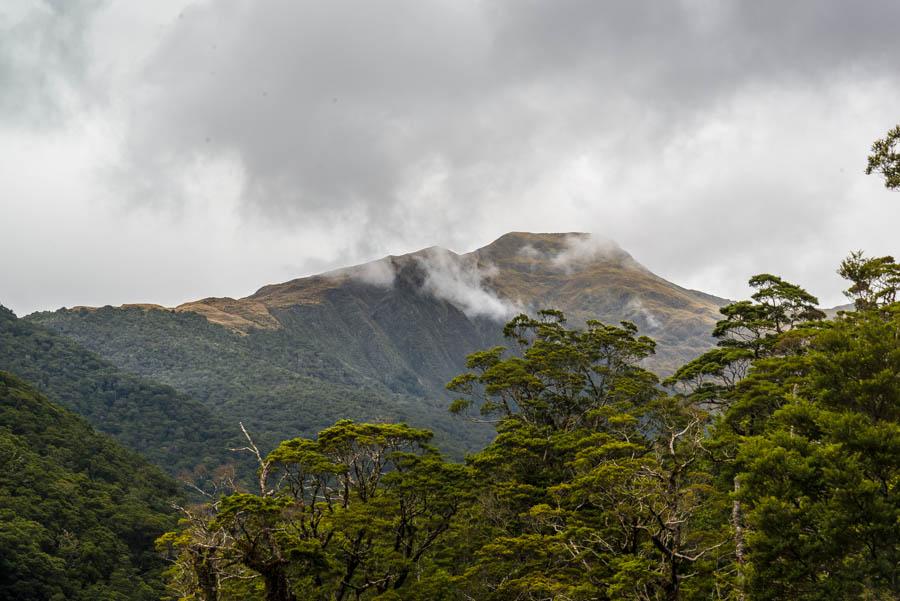 Naomi VanDoren Travel New Zealand day 6-5