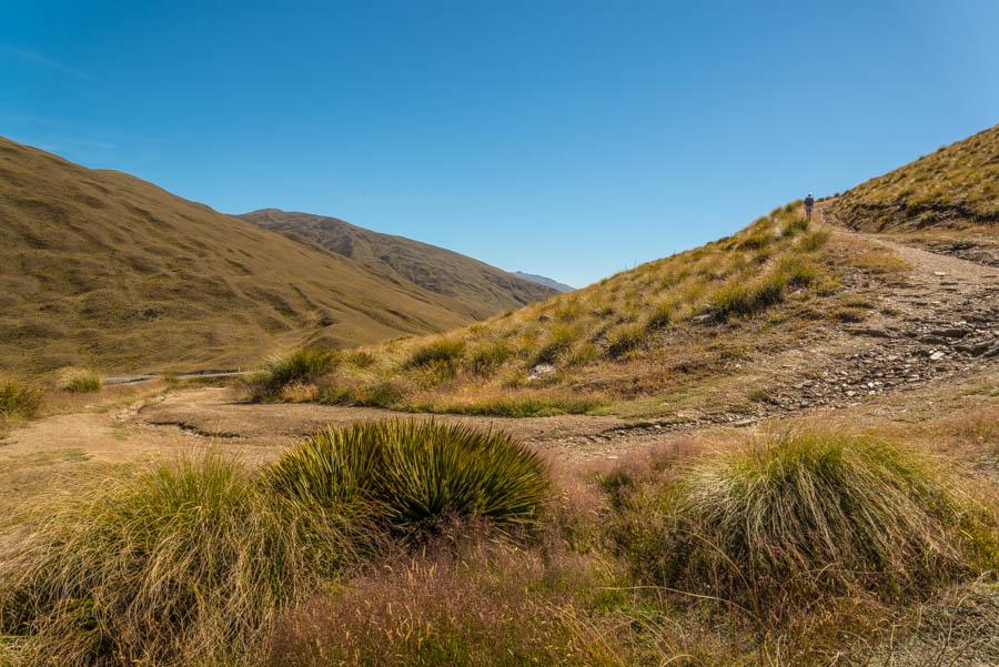 Naomi VanDoren Travel New Zealand day 7-2