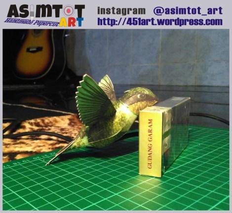 new1-r-bird1-1
