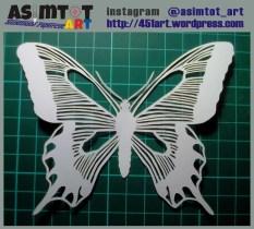 new1-w-butterfly1-5