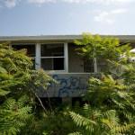 pleas.island.visit2_steveb_352