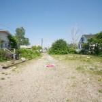 pleas.island.visit2_steveb_444