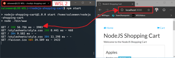 The Microsoft Edge browser connected to a NodeJS server running inside of a Windows Subsystem for Linux 2 distro.