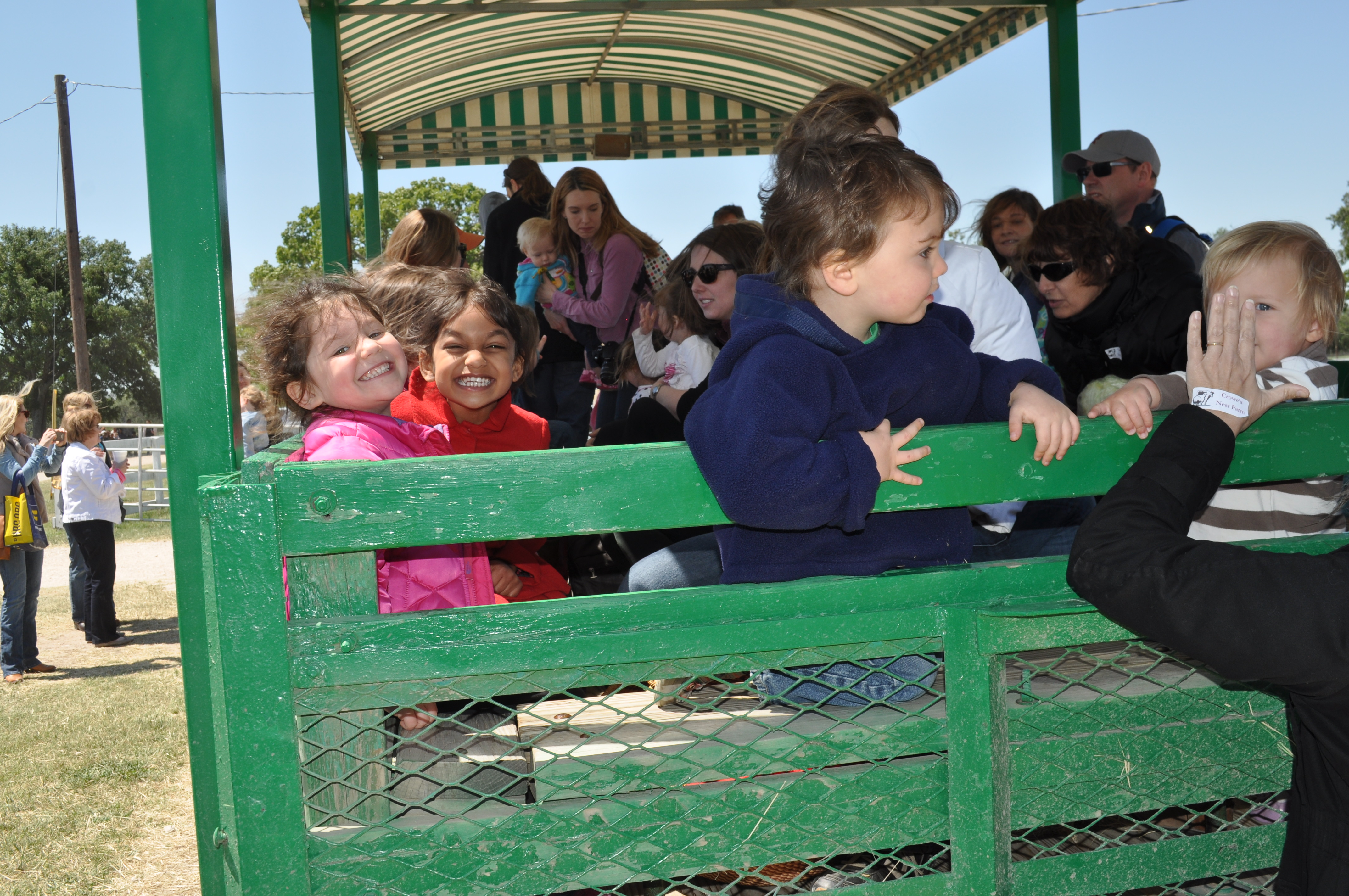 Preschool Farm Field Trip