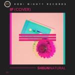 """Sheun Natural - """"If (Cover)"""""""