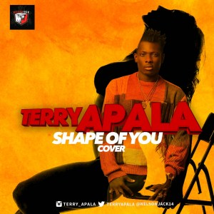 Terry-Apala-Shape-of-You-Ed-Sheeran-Cover-mp3-image-300x300 Audio Music Recent Posts Singles