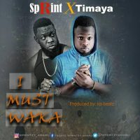 Sprint Ft. Timaya - I Must Waka