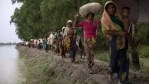 Nearly 1million Rohingya Muslims Have Fled Myanmar Due to Widespread Prosecution
