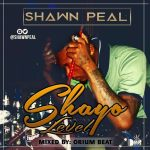 Shayo-Level-Shawn-Peal Music