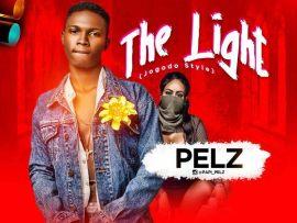 Pelz - The Light (Prod. by Maxta Mix)
