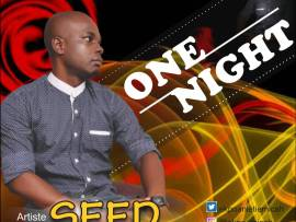 Seed - One Night