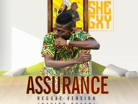 Shegxy - Assurance Reggae Version