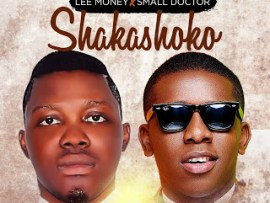 Lee Money X Small Doctor - Shakashoko