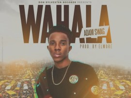 Adam Swag - Wahala (Prod By Elmore)