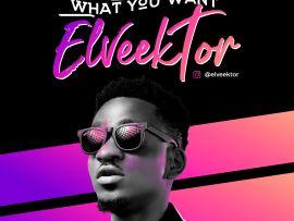 Elveektor - What You Want