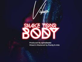 Viber - Shake Your Body