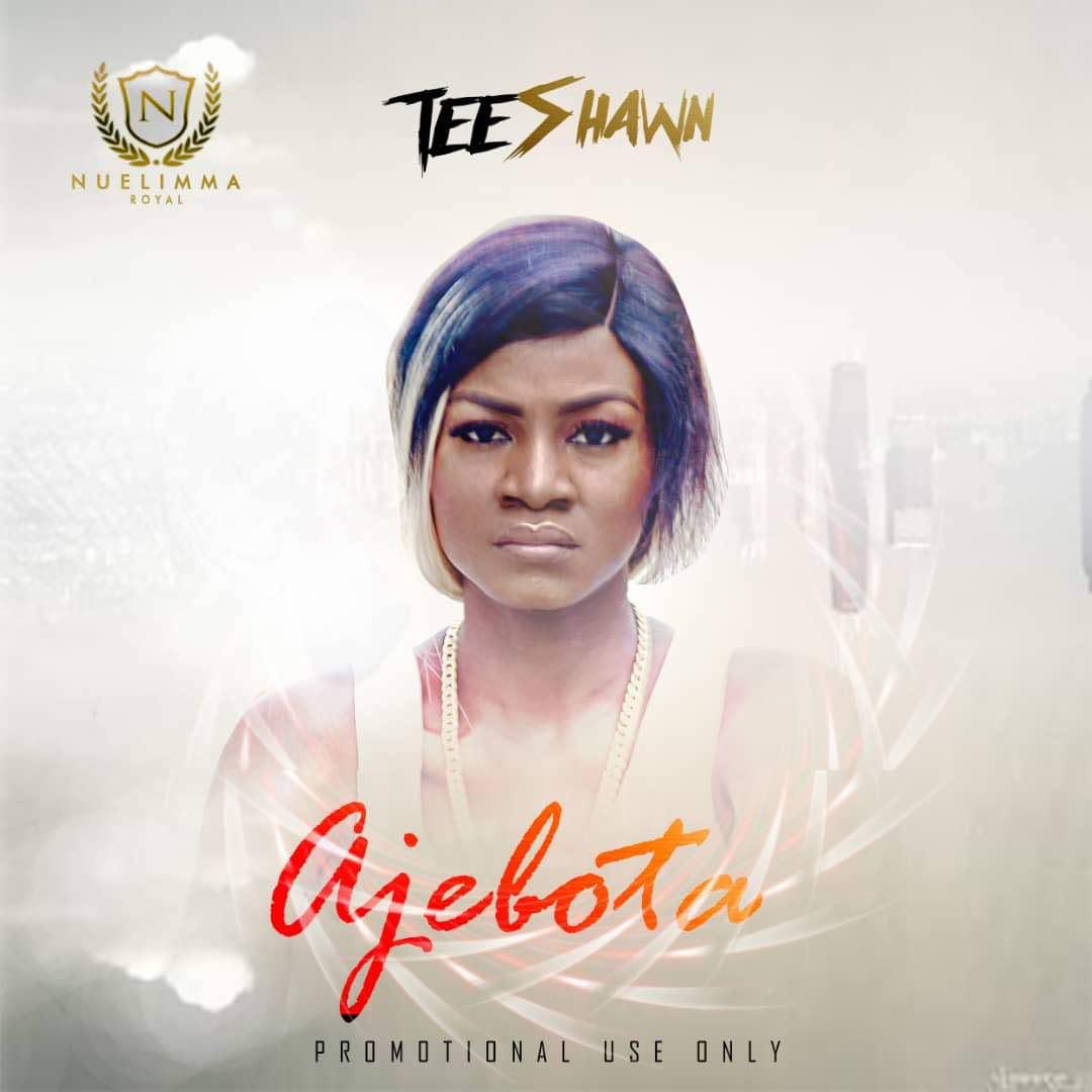 Tee Shawn - Ajebota