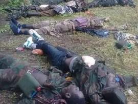 Graphic Photos:?Nigerian troops kill several Boko Haram terrorists in Yobe State