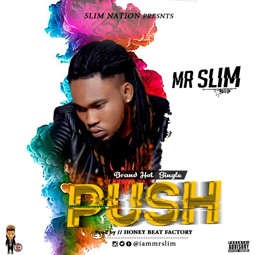 Mr Slim - Push