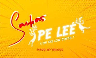 Samkas - Pe leé (On The Low Cover)