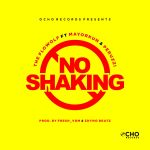 The-Flowolf-Ft.-Mayorkun-Peruzzi-No-Shaking Audio Music Recent Posts