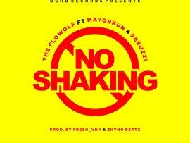 The Flowolf Ft. Mayorkun & Peruzzi - No Shaking