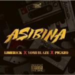 Limerick-Asibina Audio Music