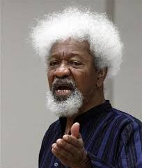 Don?t try it, Ruga settlements will set Nigeria on fire ? Soyinka
