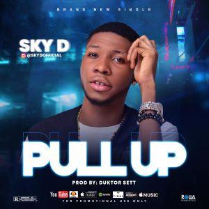 Sky D - Pull Up (Prod. Duktor Sett)