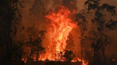 Fires in Bobin, 350km north of Sydney, on 9 November