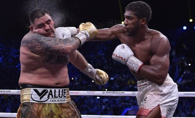 See more photos from heavyweight boxing rematch as Anthony Joshua defeats Andy Ruiz to regain his titles