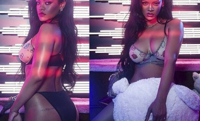 Rihanna flaunts her sensational figure in racy lingerie? (Photos)