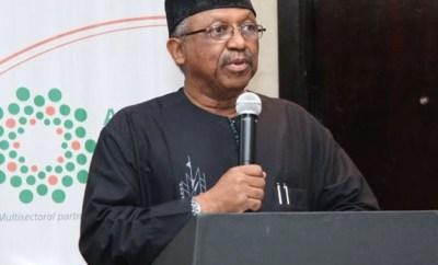 COVID-19: Buhari will determine when to lift lockdown - Minister of Health, Ehanire Osagie
