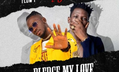 Music: Terry Apala x Flow P - Pledge My Love