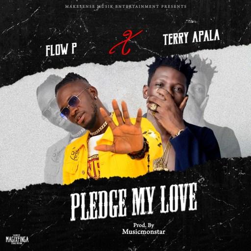Music: Terry Apala x Flow P - Pledge My Love
