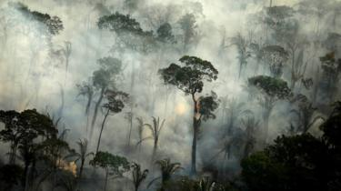 Smoke billows from a fire in an area of the Amazon rainforest