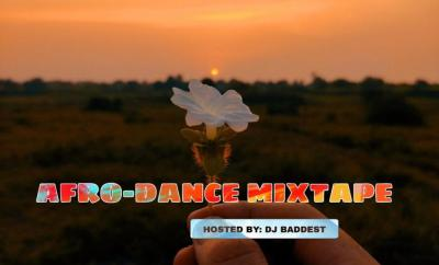 SureLoaded Ft. DJ Baddest - Afro Dance Mixtape
