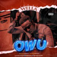 Wella - Owu