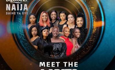 Meet the 22 #BBNaija housemates