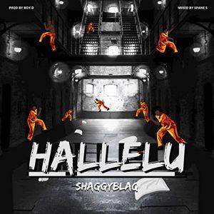 Shaggyblaq – Hallelu