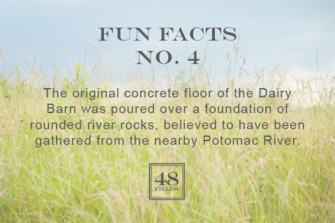 Fun Facts 4 48 Fields Leesburg VA Wedding Barn